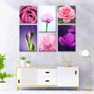 Collage Canvas Walls